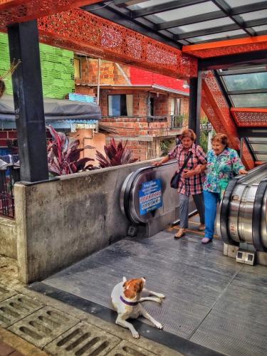 Communa 13 Escalators Old Ladies Medellin Colombian Cultural Quirks